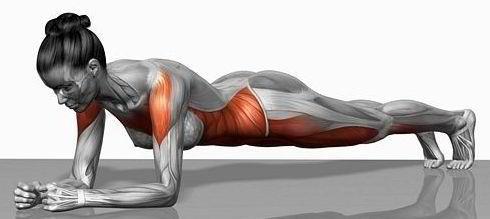 Got Plank?